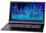 NEXOC Office Notebook (17,3 Zoll Full HD) mit...