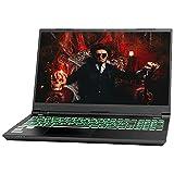 NEXOC Gaming Notebook (15,6 Zoll Full HD, 240 Hz)...